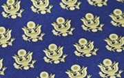 Great Seal Tie