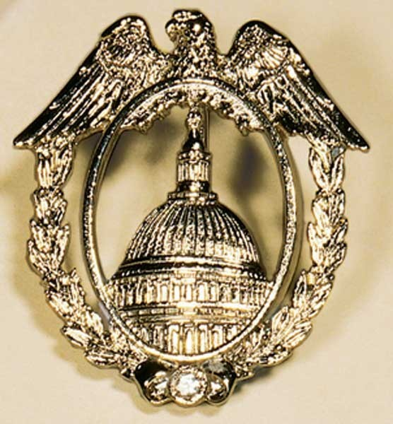 Capitol Eagle Brooch