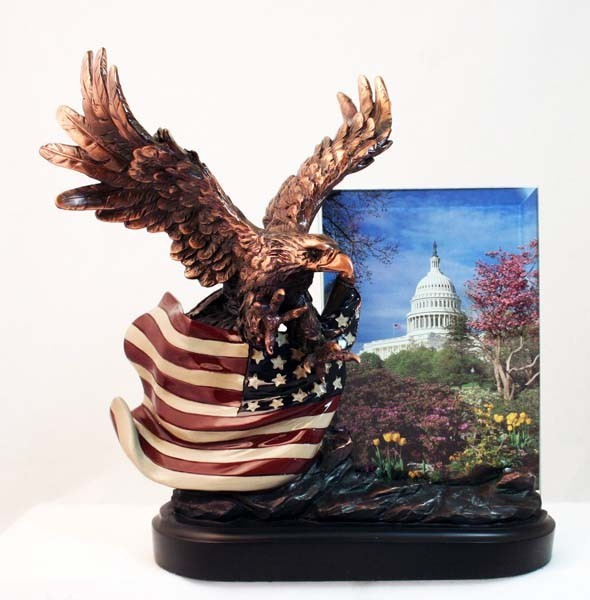 Eagle with Flag Frame