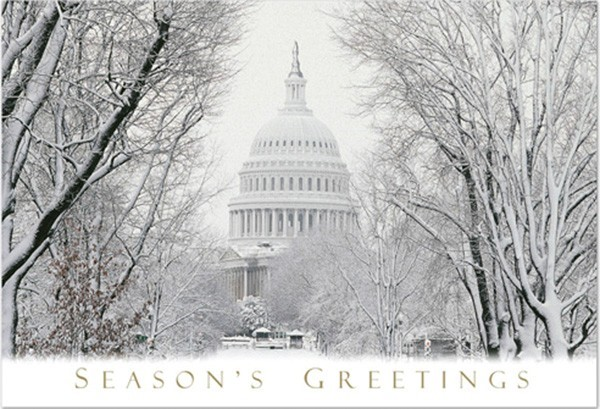 """Winter's Day"" Holiday Cards"